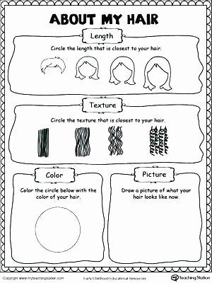 1st Grade History Worksheets 1st Grade social Stu S Worksheets