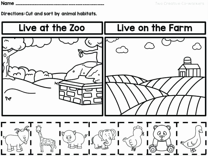2nd Grade Habitat Worksheets Luxury Animals In their Habitats Worksheets