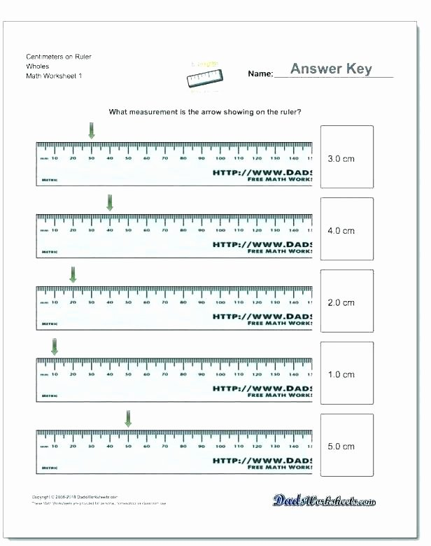 2nd Grade Measurement Worksheet 4th Grade Math Measurement Worksheets