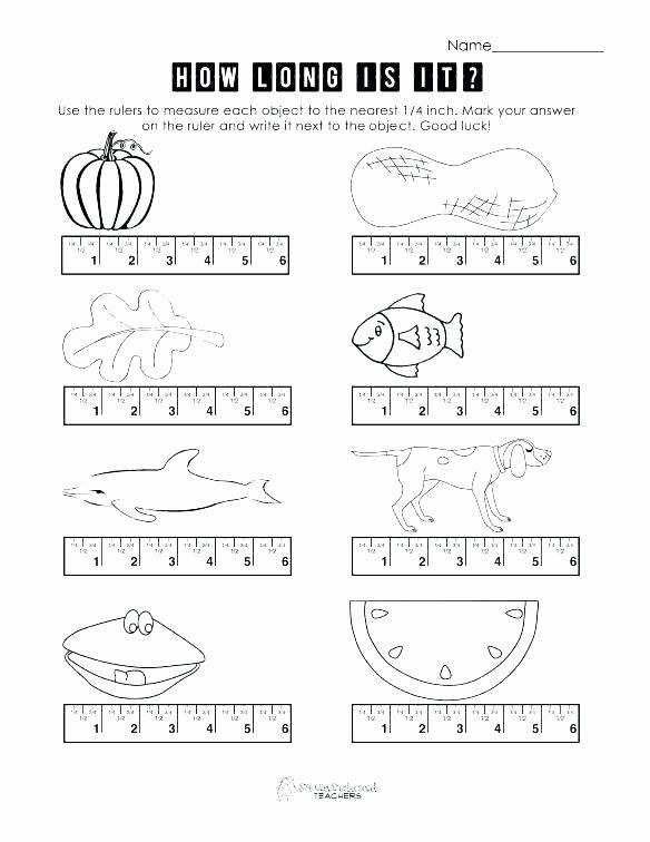 2nd Grade Measurement Worksheets Free Measurement Worksheets Grade 2