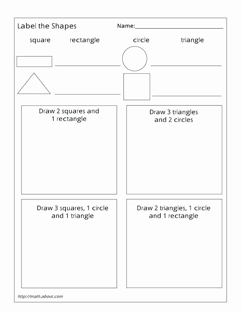 cross sections of shapes worksheets 3 dimensional shape worksheet sorting 2 and nets 3d printable