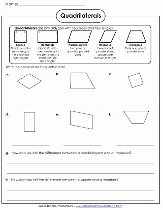 3 Dimensional Shapes Worksheets Quadrilaterals Worksheet Polygon Worksheets Three
