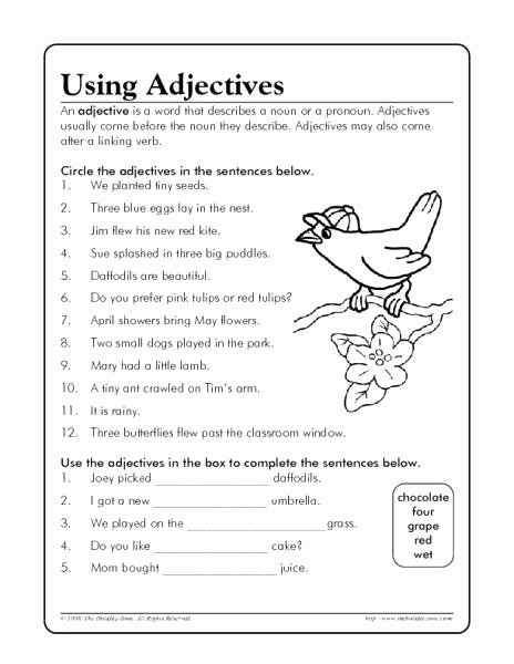 3rd Grade Adjectives Worksheets 3rd Grade Adjective and Adverb Worksheets – Moonleads