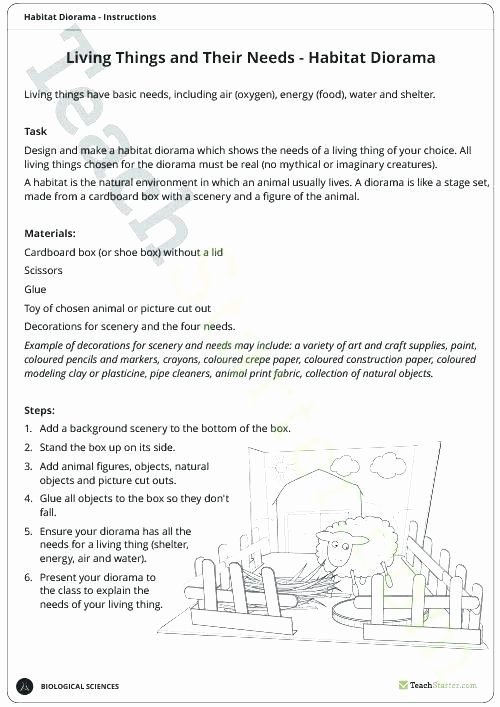 3rd Grade Ecosystem Worksheets Ecosystem Roles and Energy Flow Through Ecosystems Diagram