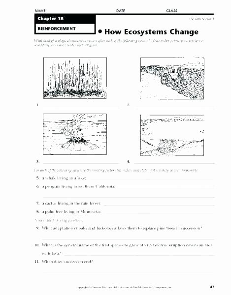 3rd Grade Ecosystem Worksheets Lesson 1 2 and 3 Living Things the Environment Video