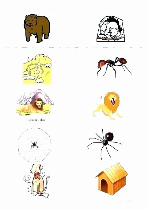 3rd Grade Habitat Worksheets Animals and their Habitats Worksheets – Slaterengineering