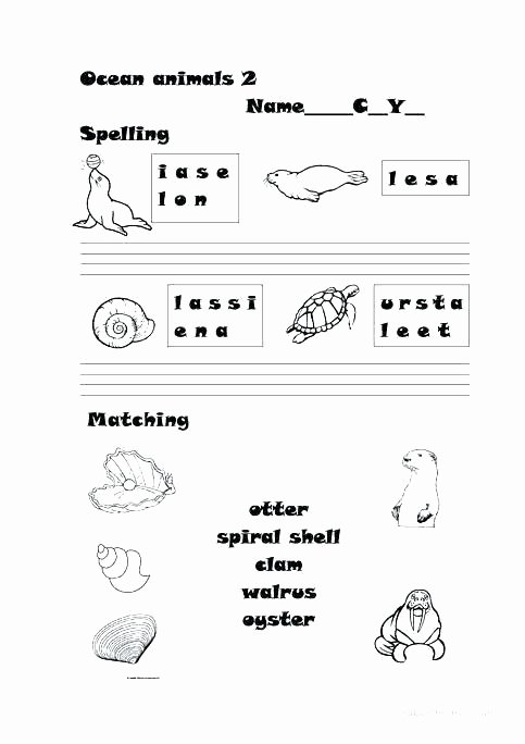 3rd Grade Habitat Worksheets Animals Habitats Worksheets Matching Animal Worksheet Year 1