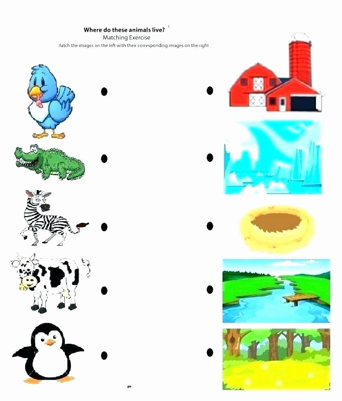 3rd Grade Habitat Worksheets Animals Homes Worksheets – Redoakdeer