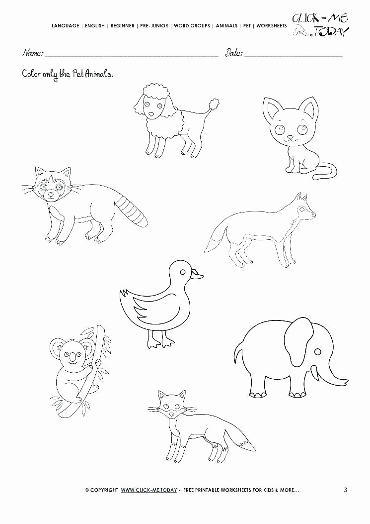3rd Grade Habitat Worksheets Dog Worksheets Free Printable Pet Care Animal Habitats Pdf