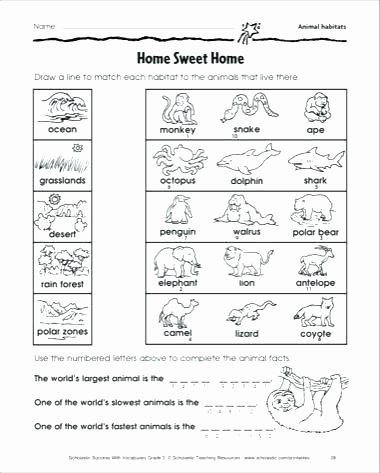 3rd Grade Habitat Worksheets Printable Desert Habitat Free Worksheets for Preschool and