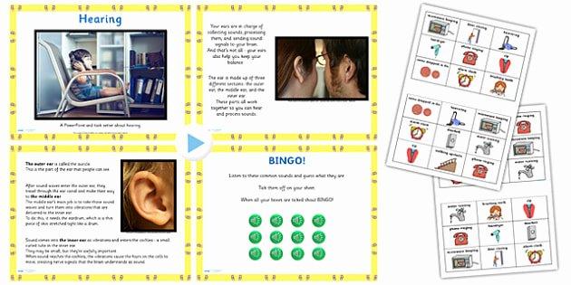 5 Sense Worksheet Cfe Science Senses Hearing Powerpoint Pack Ks1 Science