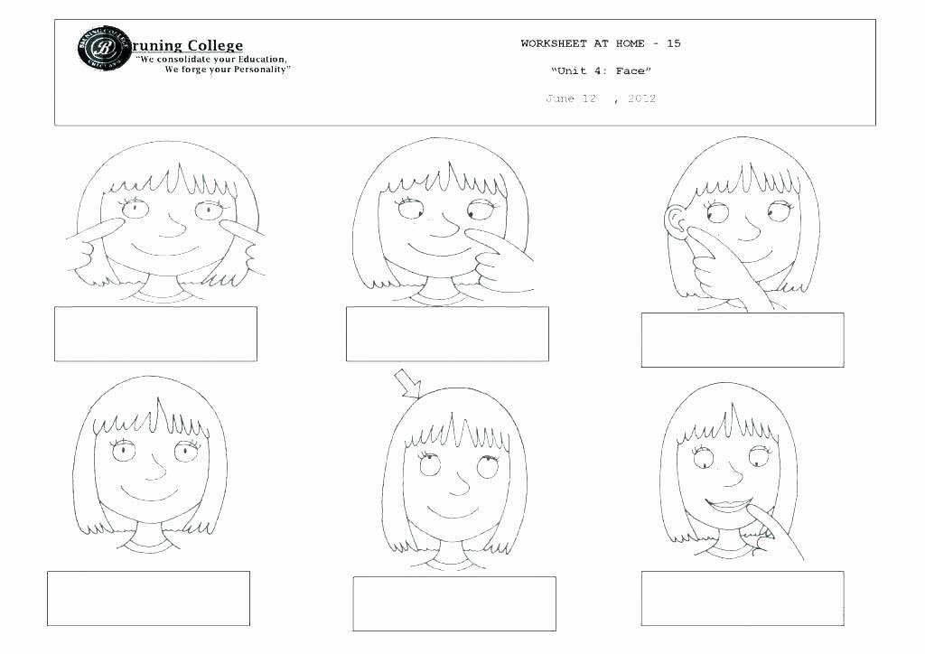 5 Senses Kindergarten Worksheets Human Body Worksheets for Kindergarten Free 5 Senses
