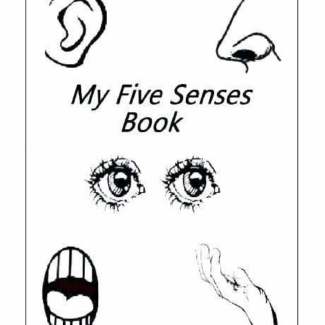 5 Senses Kindergarten Worksheets Kindergarten Ience Worksheets Five Senses Inside Printable