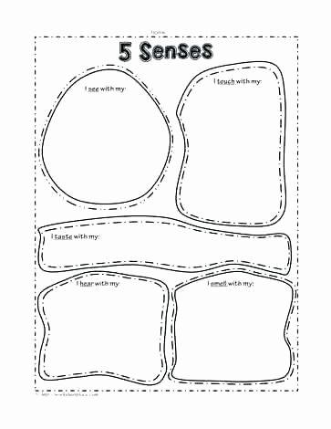 5 Senses Kindergarten Worksheets Sensory Words Worksheet Exercises with Answers