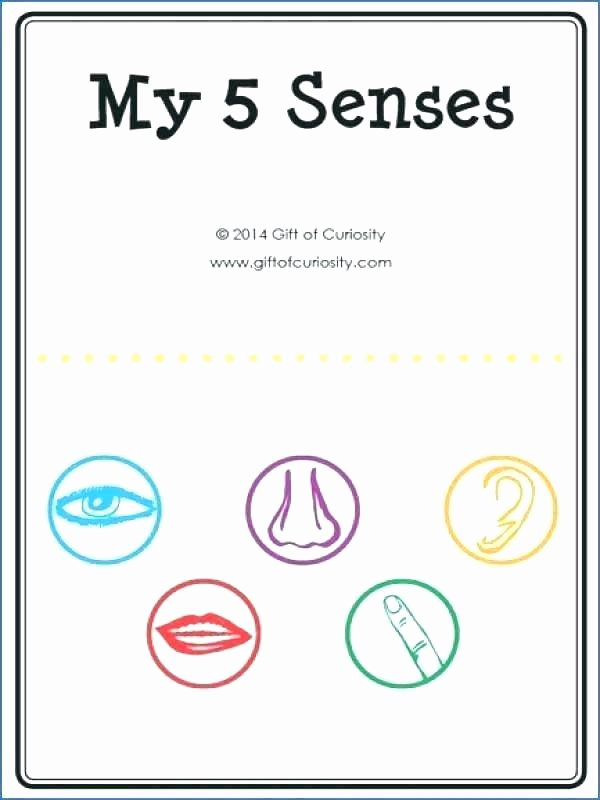 5 Senses Printable Worksheets 5 Senses Gift Printables Free Gift Ideas