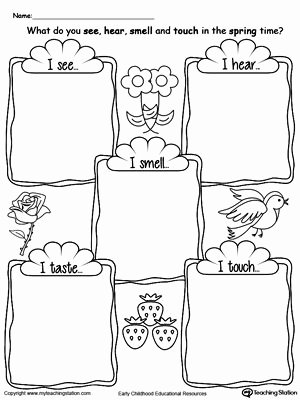 5 Senses Printable Worksheets Beatriz G³mez Carbega08 En Pinterest