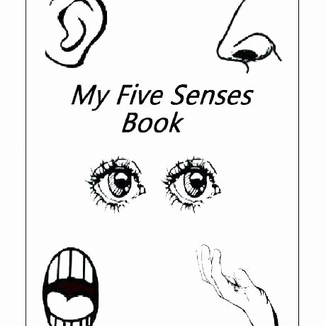 5 Senses Printable Worksheets Kindergarten Ience Worksheets Five Senses Inside Printable