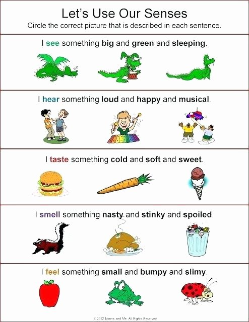 5 Senses Printable Worksheets Sensory Images Worksheets