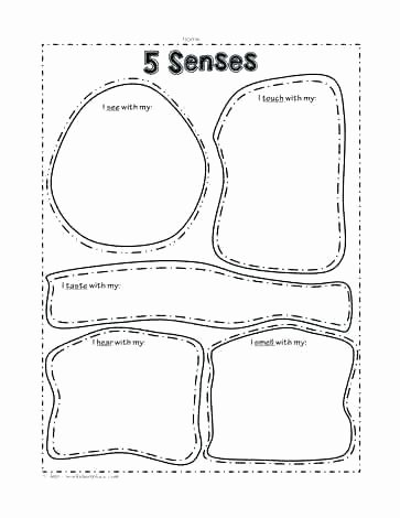 5 Senses Printable Worksheets Sensory Words Worksheet Exercises with Answers