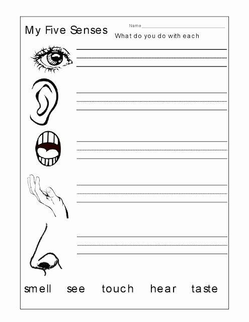 5 Senses Worksheet for Kindergarten 1 Five Sense Worksheet Five Senses Kindergarten Worksheets