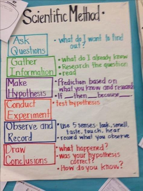5 Senses Worksheet for Kindergarten 5 Senses Kindergarten Beautiful Kindergarten Teacher Quotes