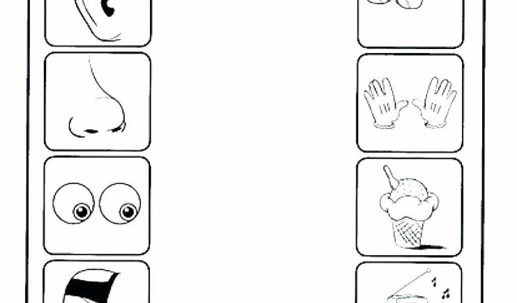 sensory images worksheets five senses preschool preschool the 5 senses worksheets sensory images worksheets with answers pdf