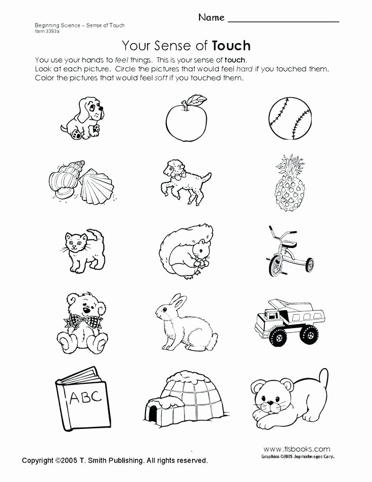 5 Senses Worksheet Preschool 5 Senses Worksheets Our Full Screen for Worksheet
