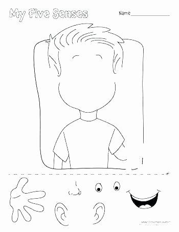 5 Senses Worksheets for Kindergarten Five Senses Worksheets for Preschoolers 5 Preschool