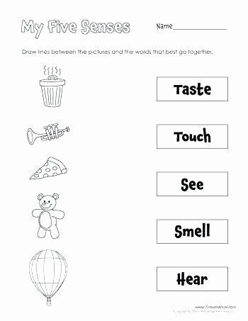 5 Senses Worksheets Kindergarten Free Number Sense Worksheets
