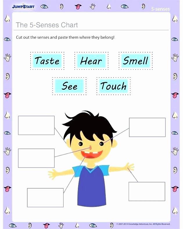 5 Senses Worksheets Kindergarten Free Printable Five Senses Worksheet for Kids My Match Up