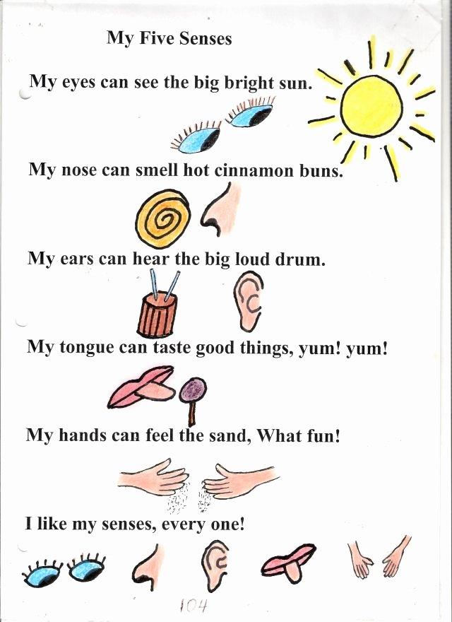 5 Senses Worksheets Kindergarten Poem No 4 My Five Senses ashisha
