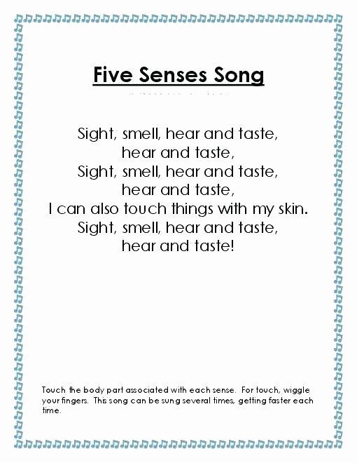 5 Senses Worksheets Pdf Free Printable Worksheets for Kids Practice Science