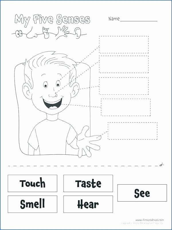 5 Senses Worksheets Pdf Kindergarten Science Worksheets Five Senses Kindergarten