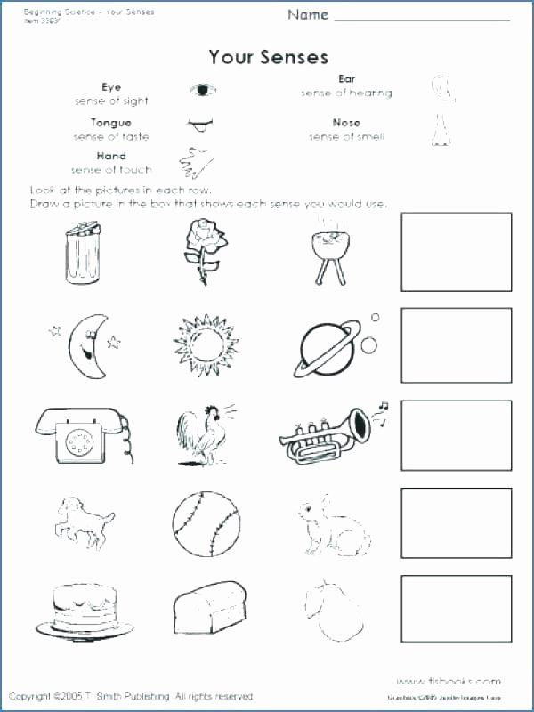 5 Senses Worksheets Preschool Beautiful Free Kindergarten Science Worksheets Kids for Pdf Printable
