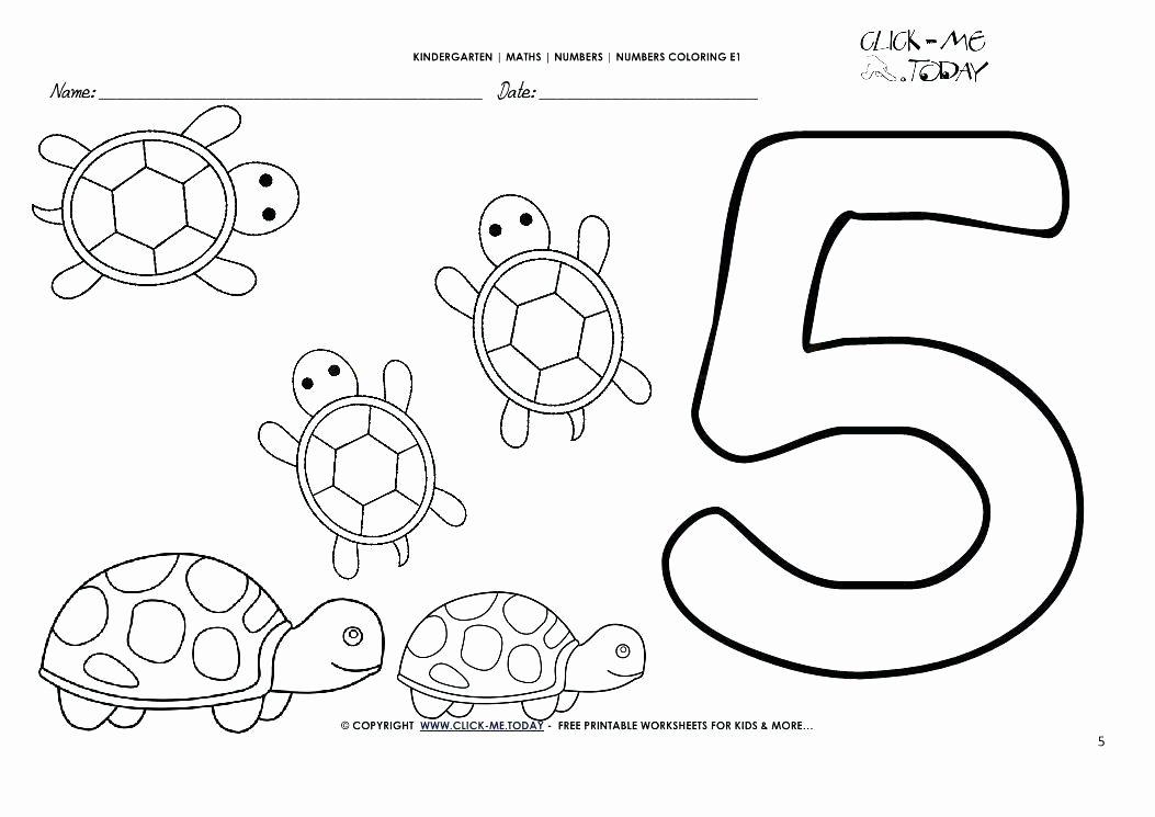 5 Senses Worksheets Preschool New 5 Senses Coloring Pages Five Senses Worksheets for Kindergarten