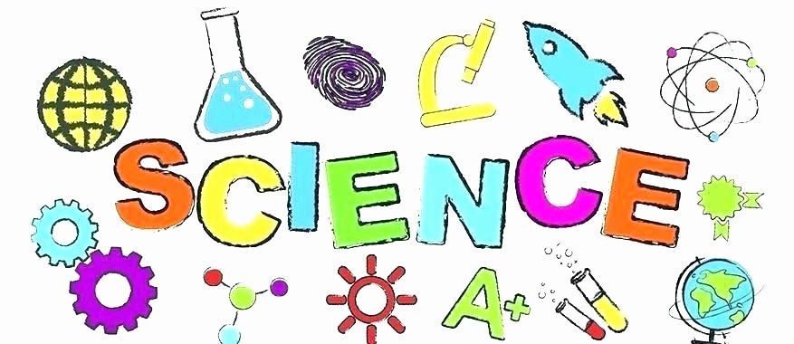 5th Grade Science Practice Worksheets Grade Science Worksheets Free Od Chain R First Worksheet Web