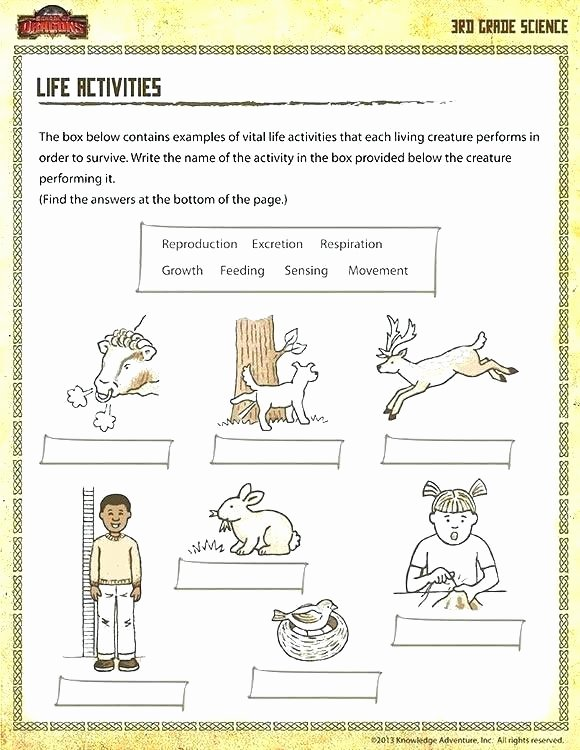 6th Grade Science Worksheets Grade 2 Science Worksheets Animals Science Worksheets for