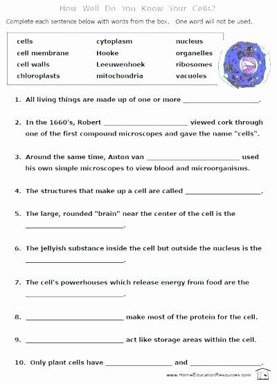 7 Grade Science Worksheets Grade Science Worksheets Ecosystem Crossword Free Grade