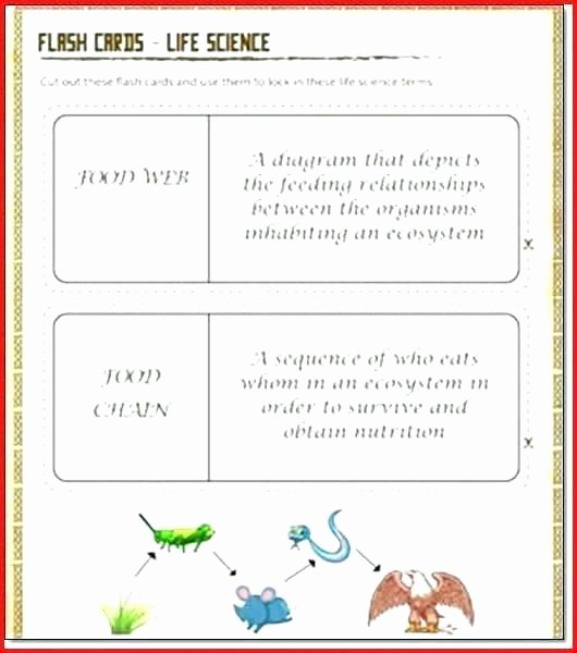 7th Grade Life Science Worksheets 7th Grade Life Science Worksheets Printable Plant and Animal