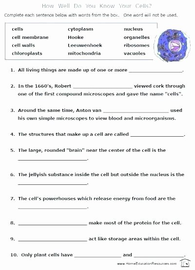 7th Grade Life Science Worksheets Grade Science Worksheets Ecosystem Crossword Free Grade