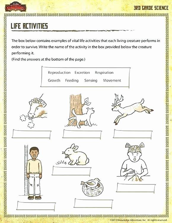7th Grade Science Worksheets Pdf Fresh Free Science Worksheets for Grade Free 6th Grade Science