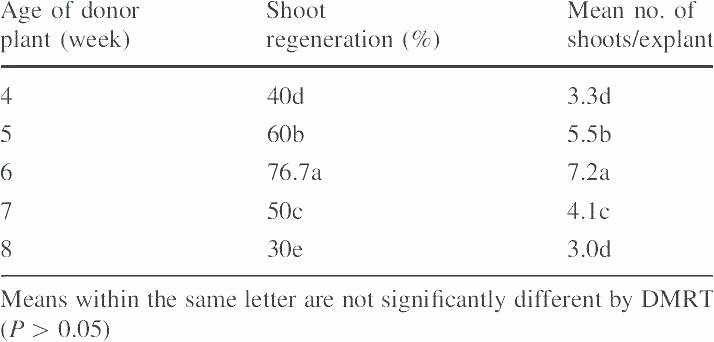 Addition 3 Digits Worksheets 3 Digit Subtraction Worksheet – Anumaquinaria