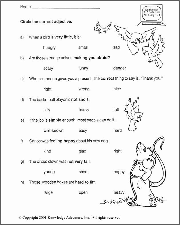 Adjectives Worksheet 2nd Grade Language Arts Worksheets 2nd Grade Antihrap