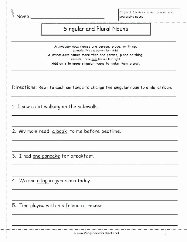 Adjectives Worksheets 3rd Grade Possessive Nouns Worksheets 3rd Grade