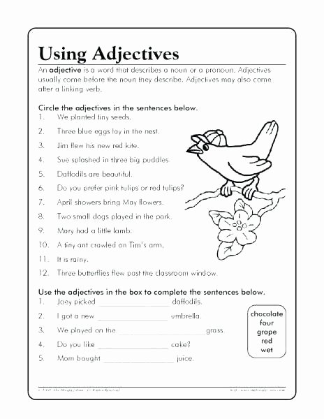Adjectives Worksheets for Grade 2 Nouns Pronouns and Adjectives Worksheets