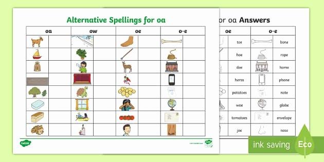 Ai Phonics Worksheet Alternative Spellings Ai Ay A E Table Worksheet
