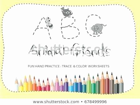 Alphabet Tracing Worksheets Pdf Z Alphabet Tracing Coloring Book Stock Vector A to Z