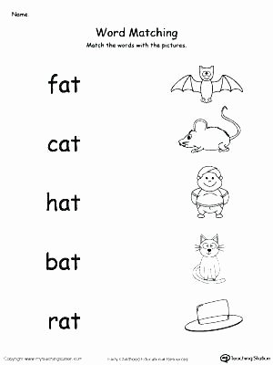 Am Word Family Worksheet Activities for All About Me theme K Pages My Family themed