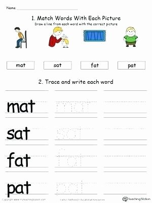 Am Word Family Worksheets Worksheet In Family Worksheets for Grade 2 Tree French at
