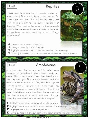 Amphibian Worksheets for Second Grade Nonfiction Leveled Reading Passages and Questions